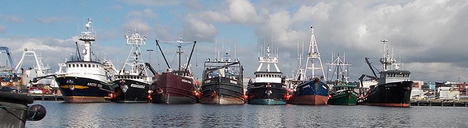 Ships_linedup
